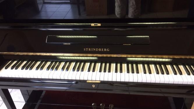 Strindberg E- 401 – VENDUTO